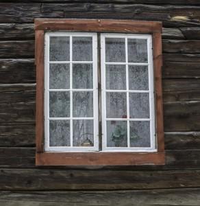 Window type