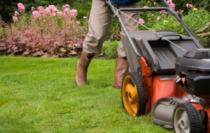 Lawn Mowing Service in Minneapolis