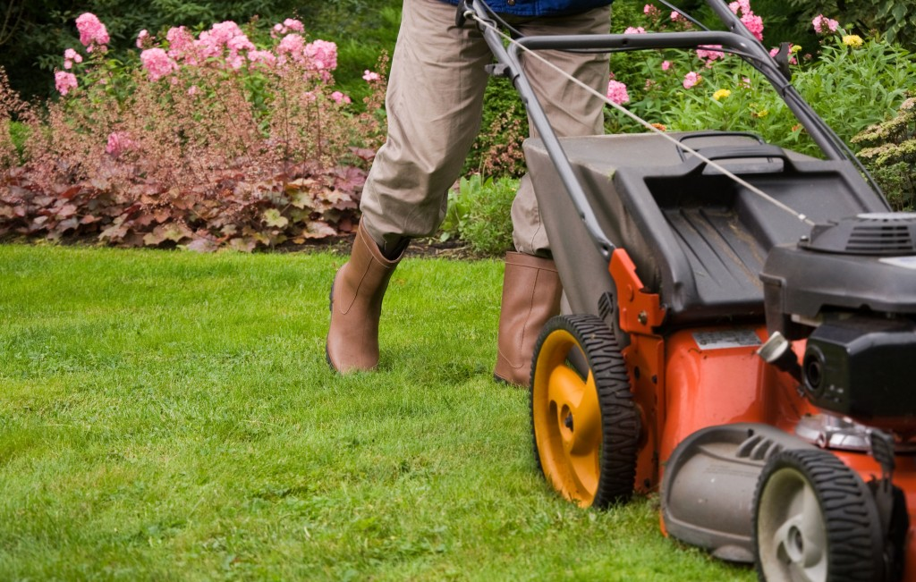 Lawn Mowing Service in Minneapolis