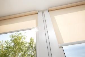 Window Blinds in Australia