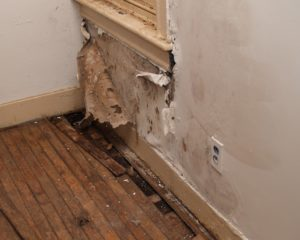 Water damaged interior wall