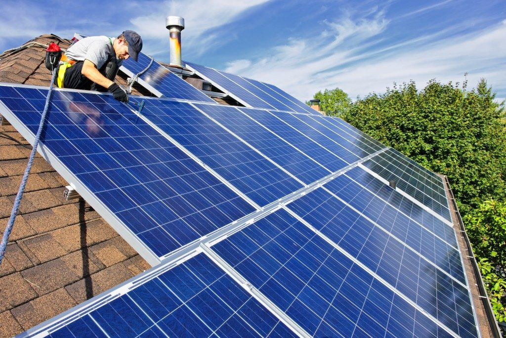 Man checking solar panels