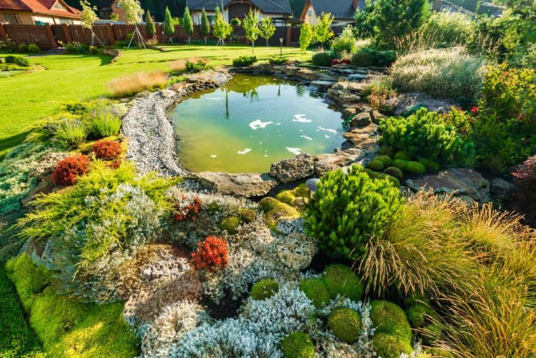 Landscaped garden with pond