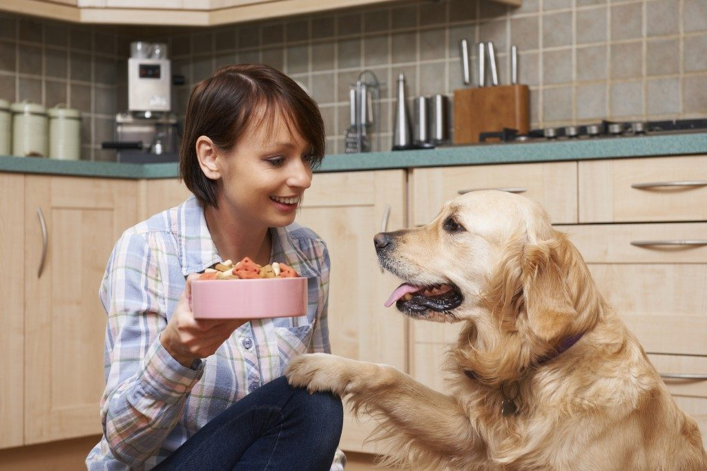 woman giving food to her dog