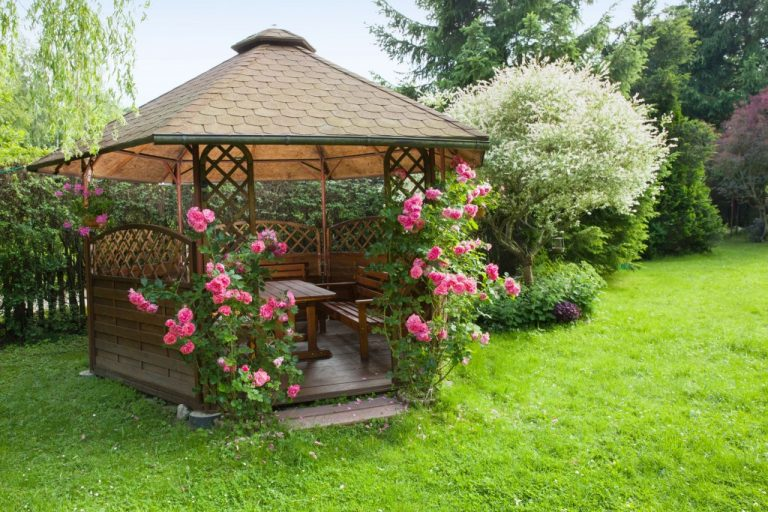 Outdoor wooden gazebo with roses